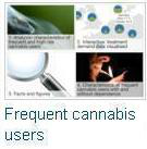 Characteristics of frequent and high-risk cannabis users