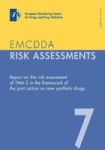 Report on the risk assessment of TMA-2 in the framework of the joint action on new synthetic drugs