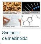 Synthetic cannabinoids in Europe
