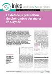 Le défi de la prévention du phénomène des mules en Guyane