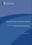 Trendspotter summary report. Recent shocks in the European heroin market: explanations and ramifications