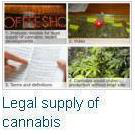Models for the legal supply of cannabis: recent developments