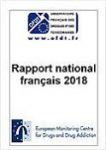 2018 National report (2017 data) to the EMCDDA by the Reitox National Focal Point France