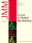 Shooting up: the interface of microbial infections and drug abuse