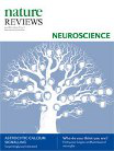 Effects of Schedule I drug laws on neuroscience research and treatment innovation
