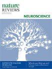 Molecular basis of long-term plasticity underlying addiction