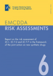 Report on the risk assessment of 2C-1, 2C-T-2 and 2C-T-7 in the frame of the joint action on new synthetic drugs