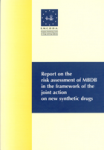 Report on the risk assessment of MBDB in the framework of the joint action on new synthetic drugs