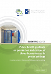 Public health guidance on prevention and control of blood-borne viruses in prison settings. Prevention and control of communicable diseases in prison settings. Scientific advice