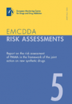 Report on the risk assessment of PMMA in the framework of the joint action on new synthetic drugs